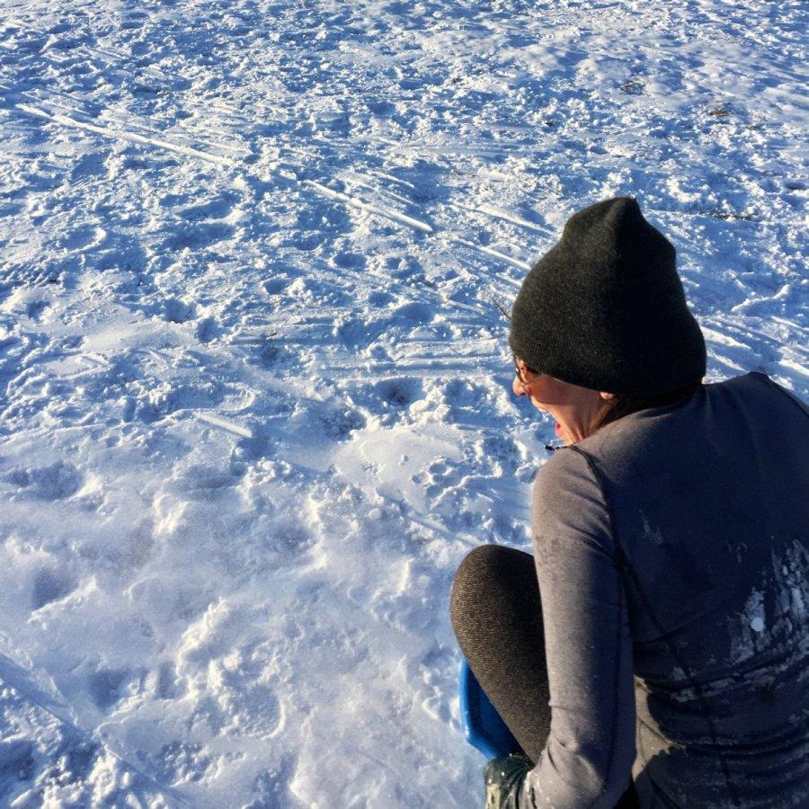1.12_sledding4