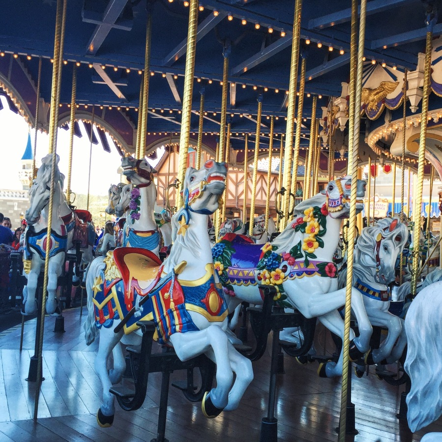 magic kingdom - carousel