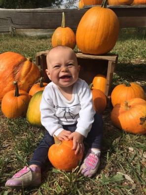 Lilia-pumpkin