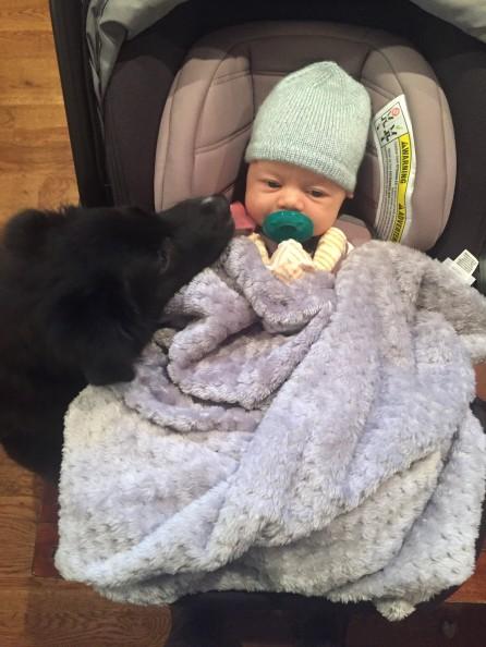 Rocky meets newborn Lilia