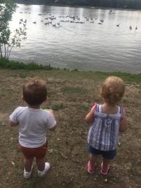 lakeside friends